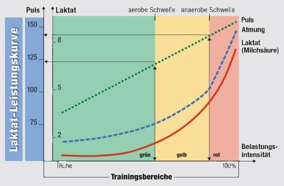 Grafik: Leistungstest bei www.beckercoaching.com